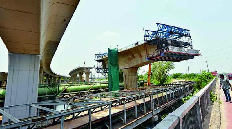 The forest department was tasked to do the study, which is one of the specific conditions of the environment impact assessment (EIA) of the bridge. (Representational image)