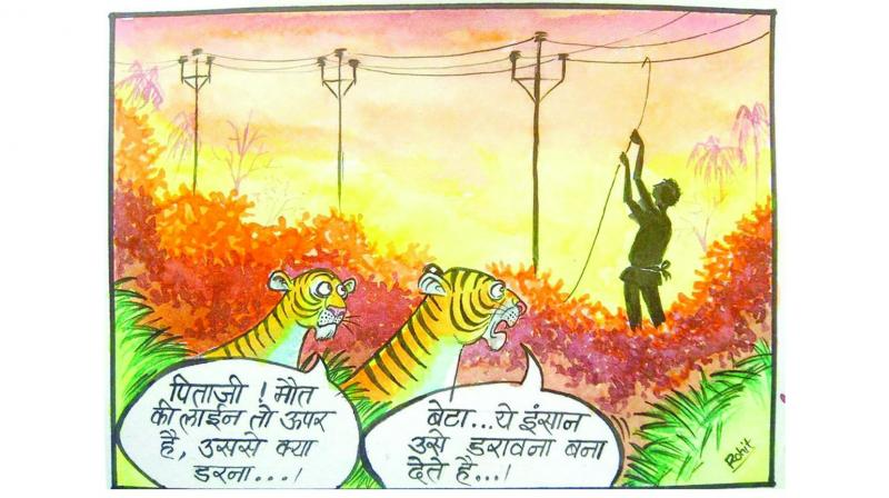 Stories using cartoons and caricatures like these are being used to highlight the urgency of wildlife conservation.