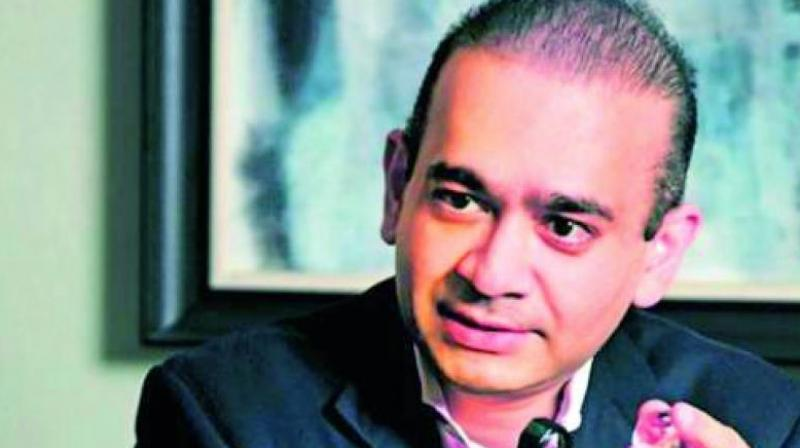 Diamond jewellery designer Nirav Modi was accused in February by state-owned Punjab National Bank of perpetrating a USD 1.8 billion fraud.