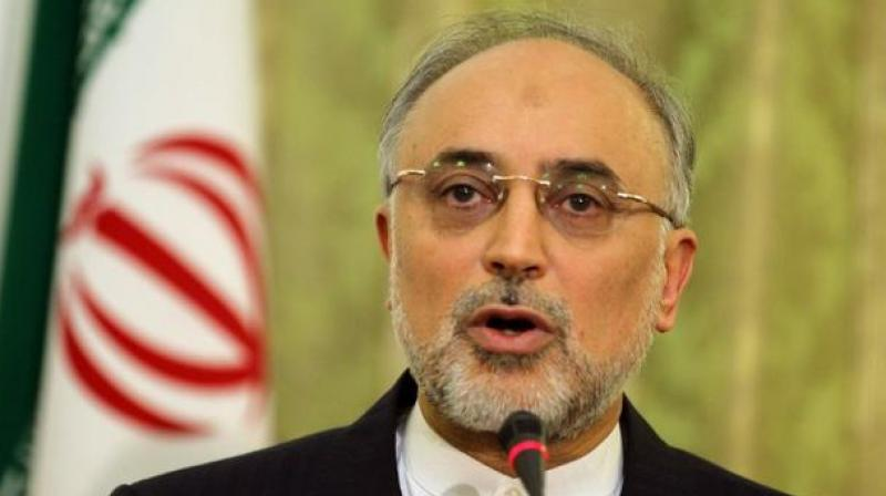Iran has notified the International Atomic Energy Agency that it has launched a plan to increase its uranium enrichment capacity, nuclear chief Ali Akbar Salehi said on Tuesday. (Photo: AFP)