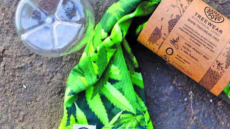 TreeWear's eco-friendly product and packaging