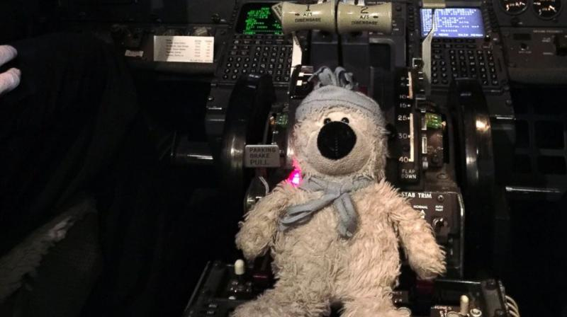 This December 2016 photo provided by Steven J. Laudeman shows stuffed bear named Teddy that Eleanor Dewald, 8, lost lost flying from Dallas to Detroit Metropolitan Airport. (Photo: AP)