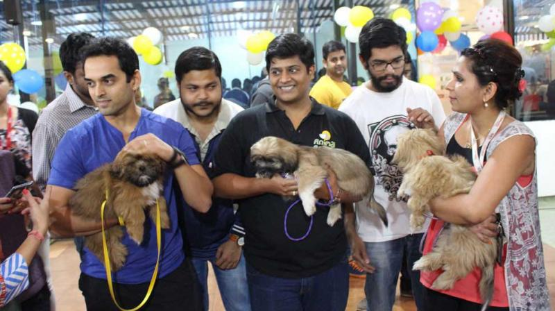 Angels Foundation recently took their therapy dogs into the Tech Mahindra offices in Mumbai.