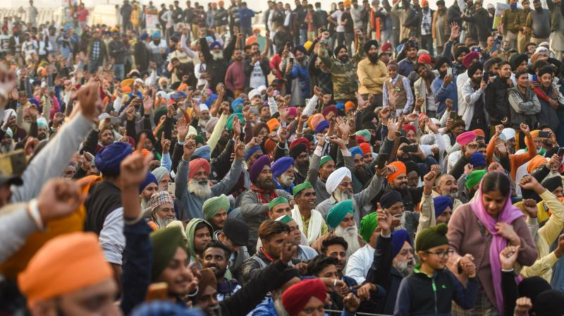 The committee members came under sharp criticism by the protesting farmers and the Opposition for publicly supporting the new laws. (Photo:PTI)