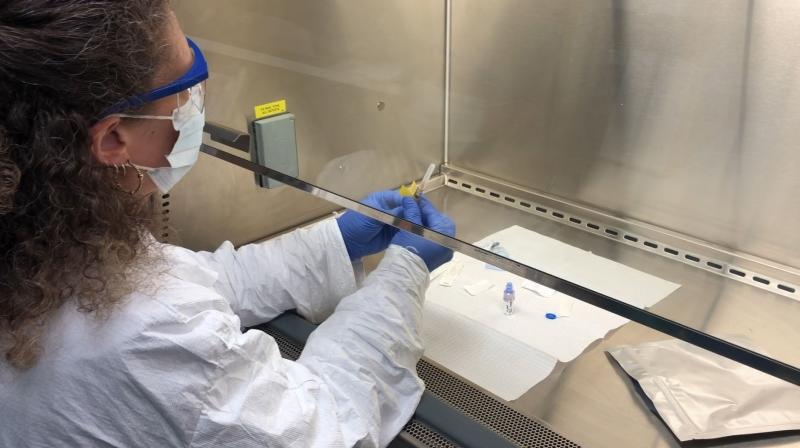 In this Wednesday, April 8, 2020 photo provided by the Center for Pharmaceutical Research, a pharmacy technologist using a biosafety level 2 hood prepares a COVID-19 coronavirus vaccine candidate for testing in Kansas City, Mo. This early safety study, called a Phase 1 trial, is using a vaccine candidate developed by Inovio Pharmaceuticals. (Photo | AP)