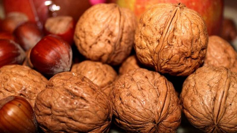 In the past, studies on walnuts have shown beneficial effects on many health outcomes like heart disease, diabetes and obesity. (Photo: Pixabay)