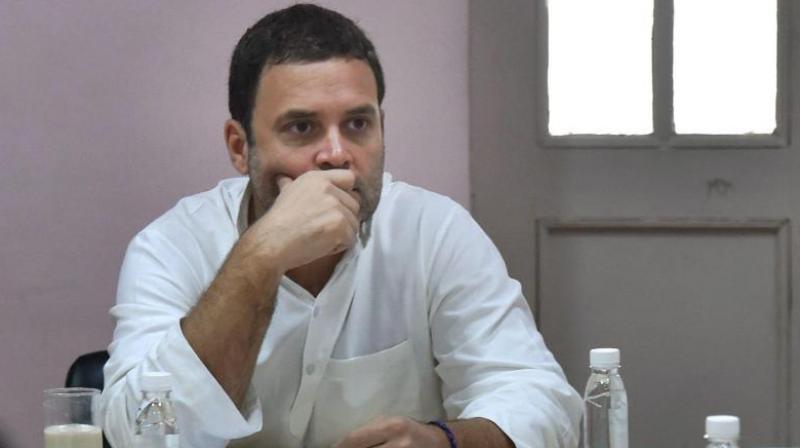 Congress President Rahul Gandhi (Photo: PTI)