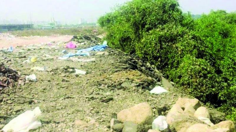 As per the BMC's data, Mumbai generates around 2,000 tonnes of debris and silt.