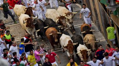 The bulls charge towards the participants as they run for their lives during the annual San Fermin Festival. (Photo: AP/ Alvaro Barrientos)