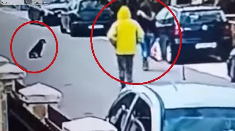 The robber abandoned his plan and was chased away (Photo: YouTube)