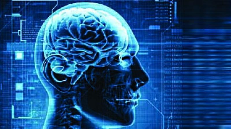 Previous studies had shown that neurotransmitter serotonin can drive fat loss.