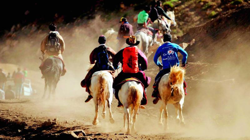 A horse-riding competition in progress