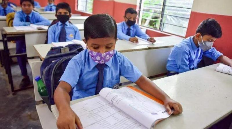 All children in primary schools need personalised guidance from their teachers. (PTI Photo)