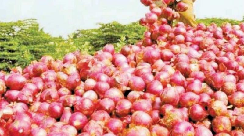 As per the Agriculture Ministry's data, the country's onion production is estimated to decline by 4.5 per cent to 21.4 million tonnes in the 2017-18 crop year.