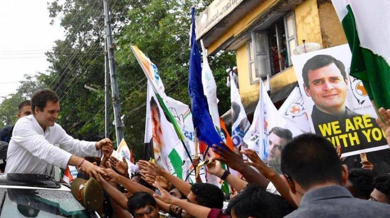 Congress won 19 out of the 20 Lok Sabha seats in Kerala. (RG Wayanad office/Twitter)