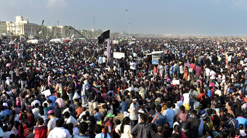 Youngstres and Students during the protest to Lift ban on jallikattu and impose ban on PETA, at Marina Beach in Chennai. (Photo: PTI)