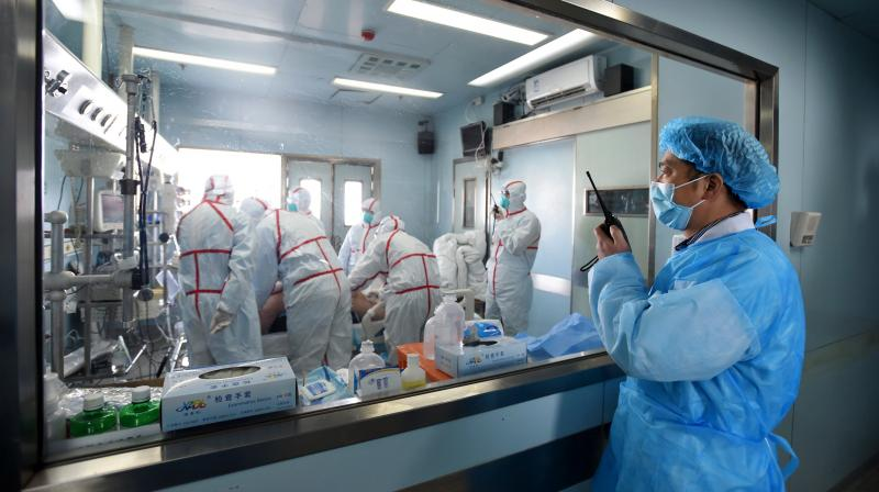 Several strains of bird flu have been found among animals in China but mass outbreaks in humans are rare. (Representational image: AFP file photo)