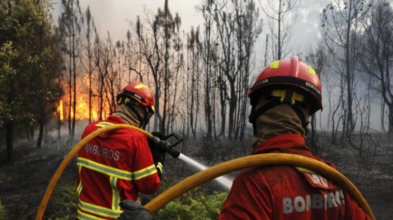 Portuguese firefighters work to stop a forest fire from reaching the village of Figueiro dos Vinhos central Portugal. (Photo: AP)
