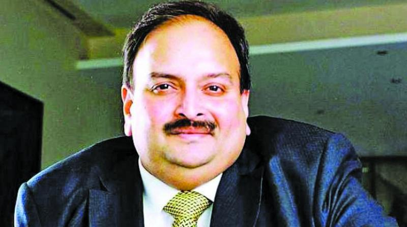 Choksi fled the country a year ago and was granted citizenship of Antigua and Barbuda on January 15, 2018. (Photo: File)