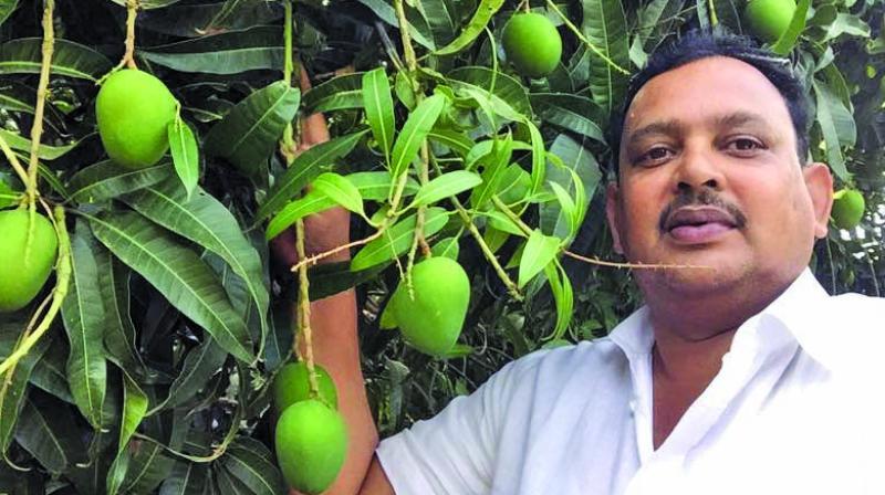 Munaf Thakur