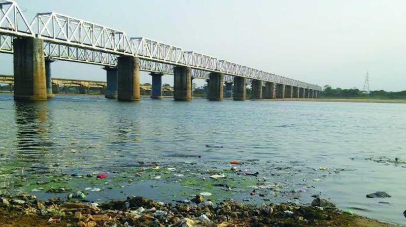 Polluted Kathajodi river