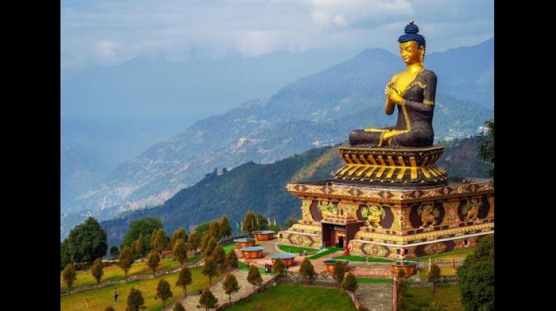 Sikkim, the second smallest and least populated state of India with its lush green and dense landscape is aboard to many wildlife animals and birds.