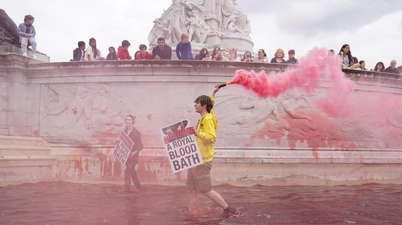 The 'XR' activists were joined by 'Animal Rebellion' activists who went on to pour red colour in the iconic fountain outside the Buckingham Palace gates. (Twitter)