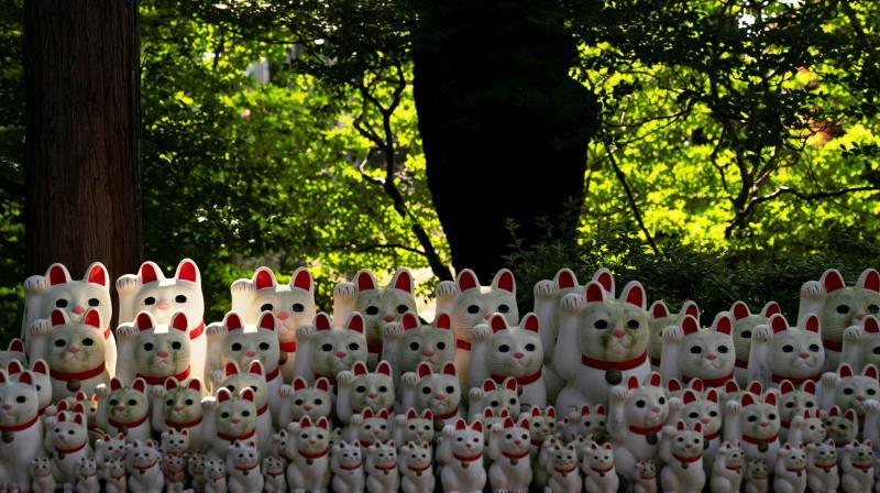 Beckoning cat figurines are on display at Gotokuji Temple in Tokyo. (Photo: AP/Jae C. Hong)