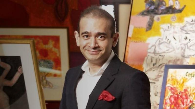 He is alleged to be the beneficiary of funds siphoned off, instrumental in introducing dummy partners and changing pattern of partnership structure of companies, sources said. (Photo: Nirav Modi website)
