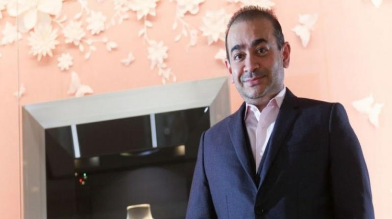 Nirav Modi (PTI file photo)
