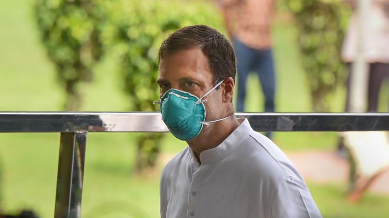 Senior Congress leader Rahul Gandhi. PTI photo