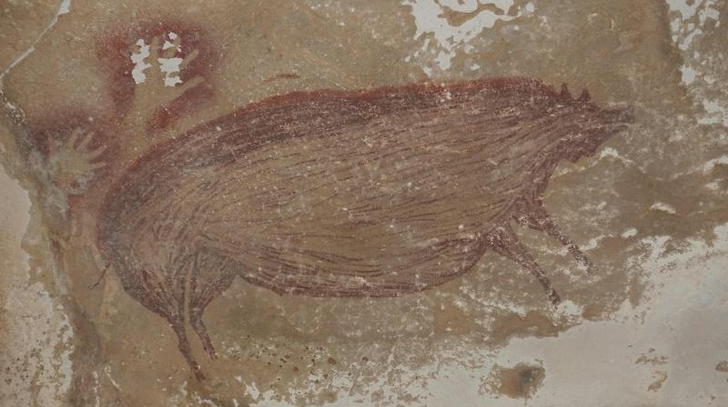 Humans have hunted Sulawesi warty pigs for tens of thousands of years, and they are a key feature of the region's prehistoric artwork, particularly during the Ice Age. (Photo:AFP)