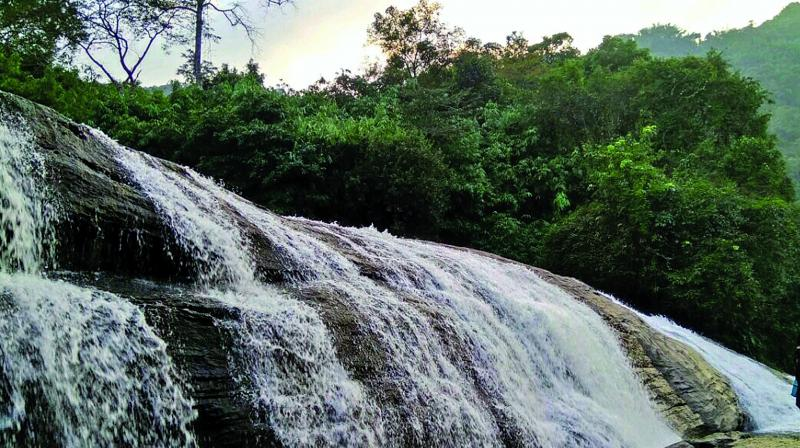 The waterfall, a popular destination among tourists during the monsoon, is situated in Tungareshwar forest, over 70 kilometres from Mumbai. (Representative image)