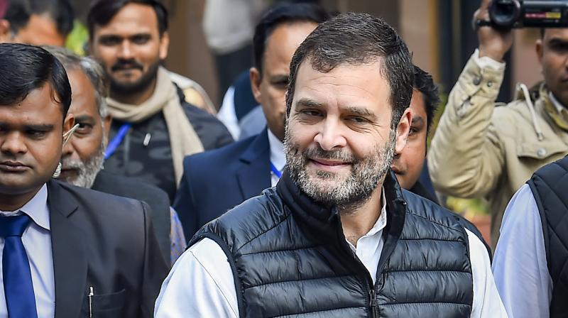 Congress leader Rahul Gandhi (PTI photo)