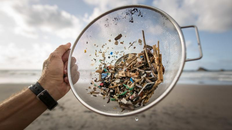 The scientists, who published their findings in peer-reviewed journal Frontiers in Marine Science, said areas with more floating rubbish generally had more microplastic fragments on the sea floor. (Representational Image: AFP)