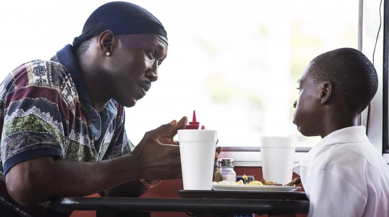 Moonlight has been written and helmed by Barry Jenkins (Photo: AP)