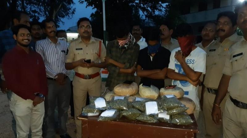 The Andhra Pradesh police has arrested three BTech students and seized 10-kilogram ganja. (Photo: ANI)