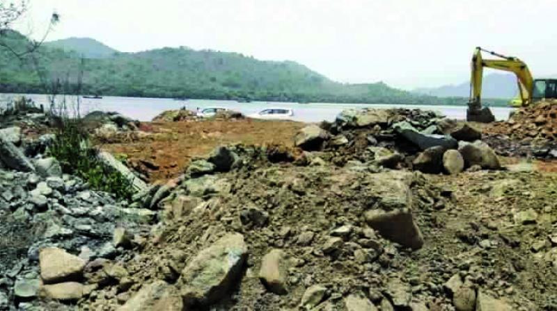 depletion of mangroves in mumbai