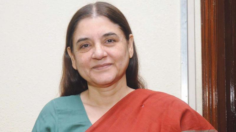 Union Minister Maneka Gandhi (Photo: File)