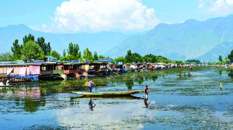 A boy jumps from a boat in the waters of Dal Lake, covered with weeds for being unattended for days due to restrictions, in Srinagar, Thursday.