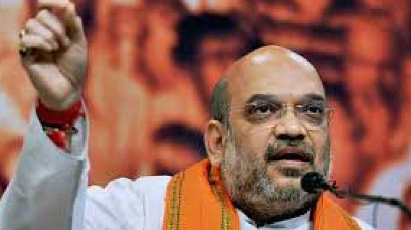 Addressing party functionaries after releasing training booklets to educate workers, Shah said the BJP's ideology is aimed at changing the society and the country's politics, sources said. (Photo: File)