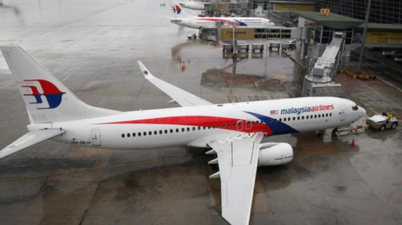 A total of 298 trees have been planted in the shape of a green ribbon, one for each of the victims who died on board the Malaysia Airlines flight. (Photo: Representational/ File)
