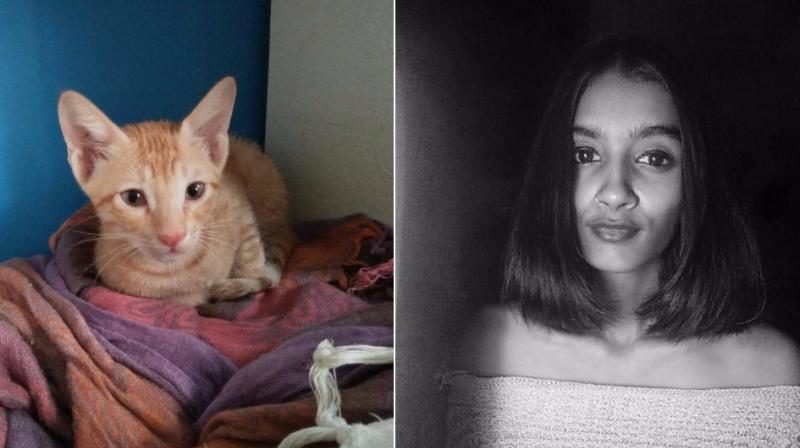 Nancy Kadarikota and one of the rescued kittens. (Photo: Facebook)
