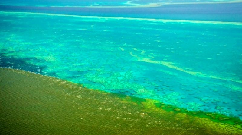A handout photo shows shows sediment caused by unprecedented rain and flooding approaching the the Great Barrier Reef. (Photo: AFP)