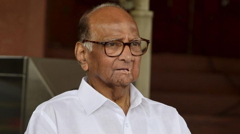 Nationalist Congress Party (NCP) chief Sharad Pawar. (PTI Photo)