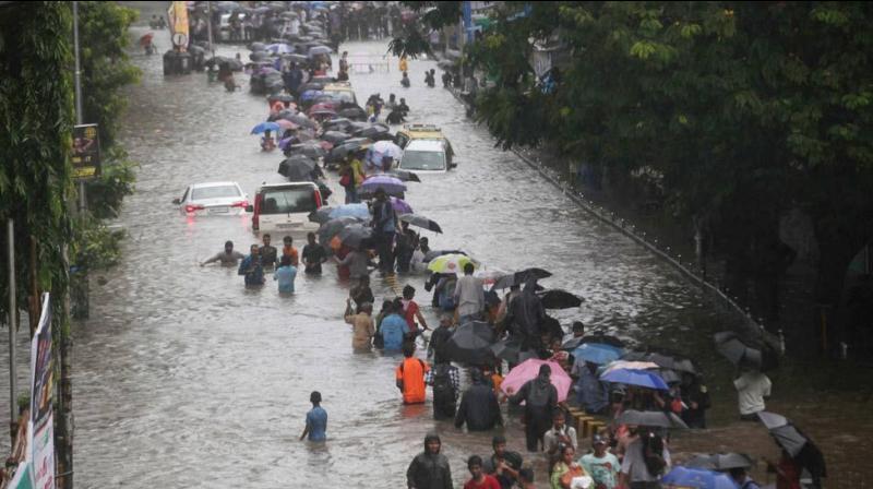 Rain activity will increase in south-central Maharashtra, Marathwada and Vidarbha in the next two days. (PTI Photo)