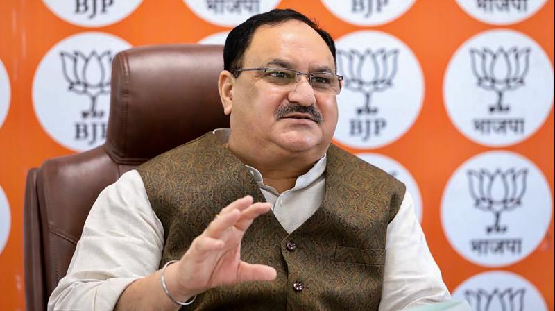 BJP president J P Nadda a three-point programme should be started by the state BJP's IT cell. (PTI Photo)