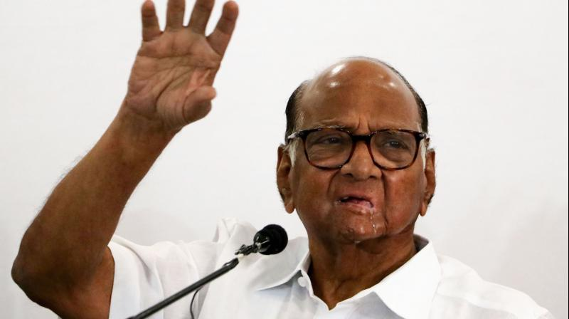 Nationalist Congress Party (NCP) chief Sharad Pawar said that BJP's claim of not being interested in bringing down the MVA government is a lie. (PTI Photo)