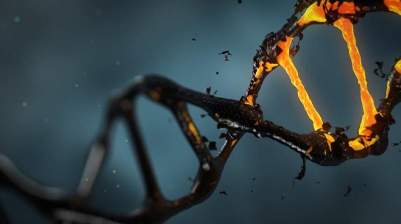 CRISPR is the first human trials of the controversial gene editing technology. (Photo: Pixabay)