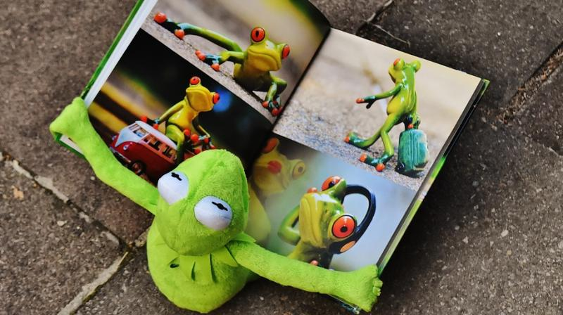 University of Sussex psychologists are saying that too many illustrations of photos in a book hamper learning (Photo: Pixabay)